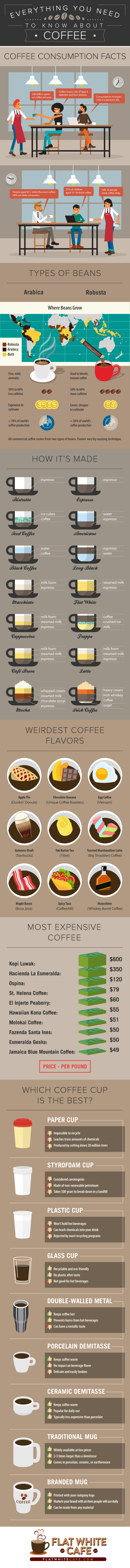 coffee-infographic-everything-you-need-to-know-about-coffee